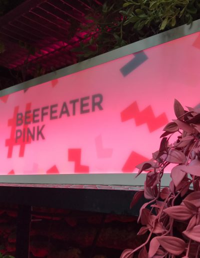 BeefeaterPink_sanIdelfonso-5
